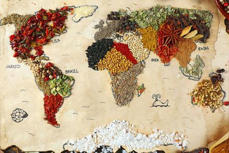 фотообои специи карта мира (food-334)