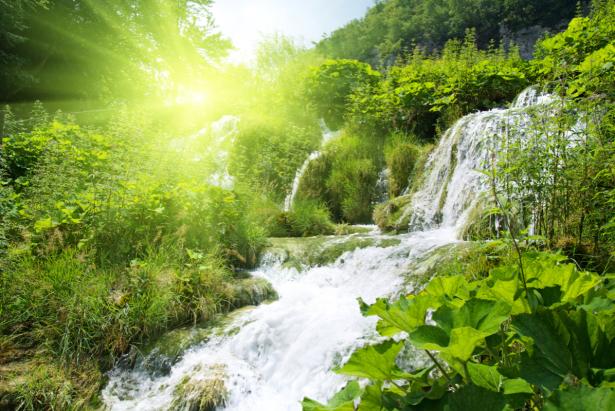Фотообои водопад, лес (nature-0000842)