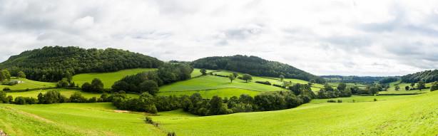 Фотообои луга и леса (panorama-50)