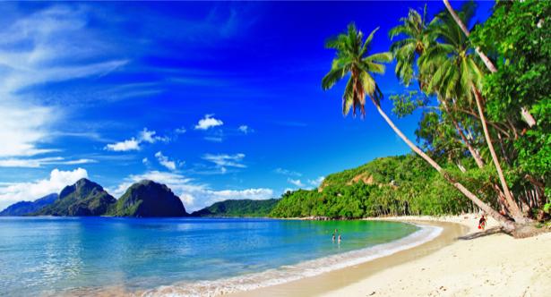 Фотообои море побережье с пальмами (sea-0000192)