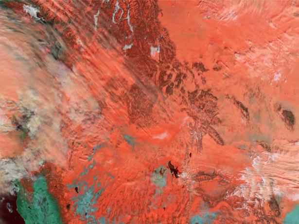 Фотообои на стену оранжевая фактура (terra-00196)