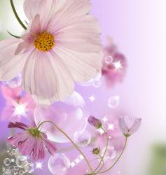 flowers-0000574