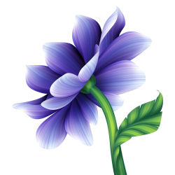 flowers-754