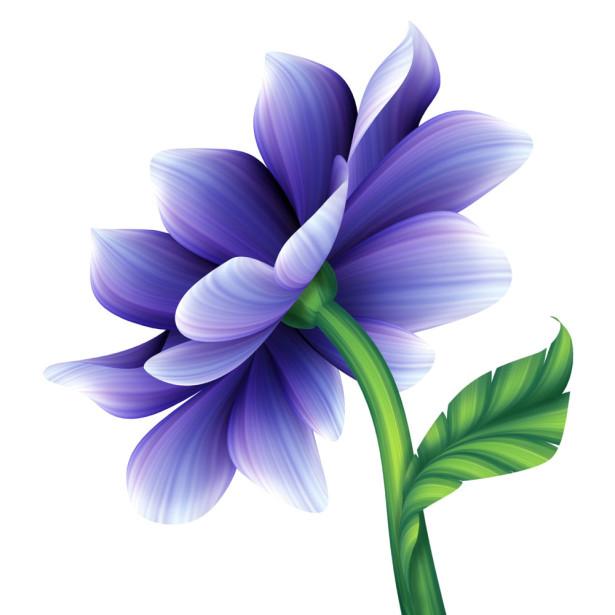 Фотообои фиолетовый цветочек (flowers-754)