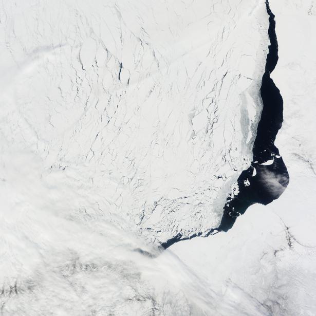 Фотообои 3д снежно белая фактура (terra-00058)