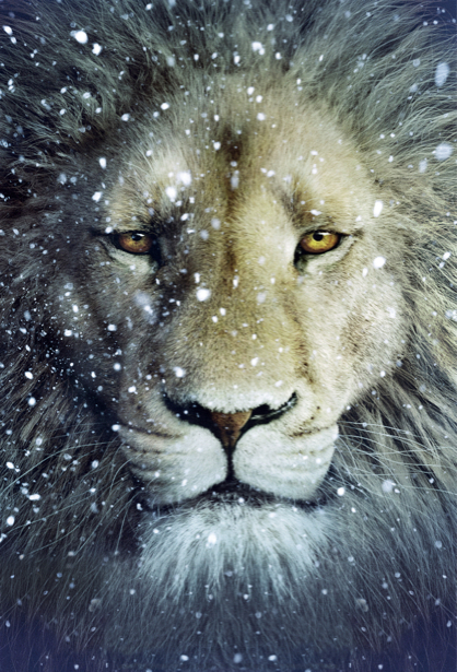 Детские фотообои лев (animals-0000028)