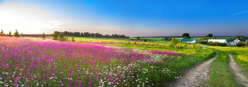 Фотообои Сельский пейзаж (city-1431)