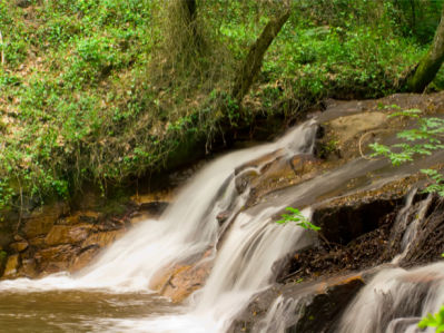Фотообои с природой лето водопад (nature-00358)
