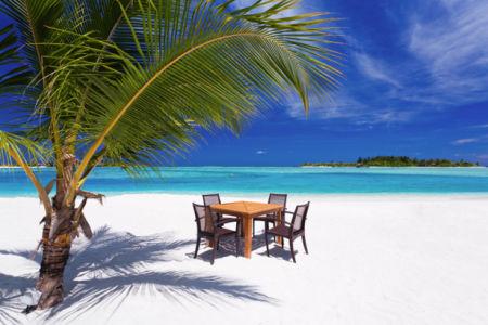 Фотообои белый берег остров пальма (sea-0000333)