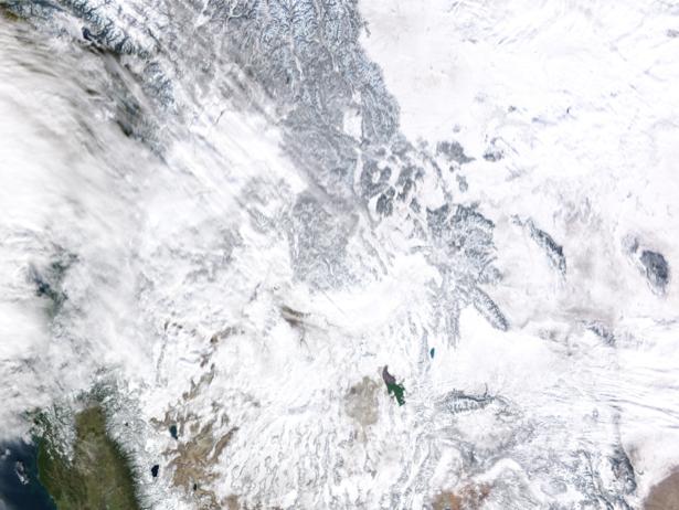 Фотообои на стену снежная фактура (terra-00209)