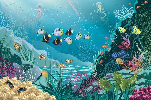 Фотообои для ванны кораллы рыбки море (underwater-world-00163)