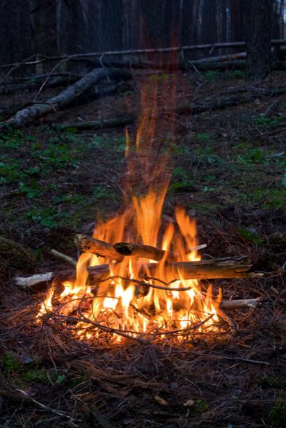 Фотообои пламя костра на улице (fantasy-0000098)
