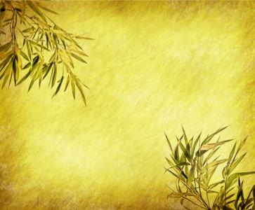 Фотообои гостиной на стену Бамбук (flowers-0000208)