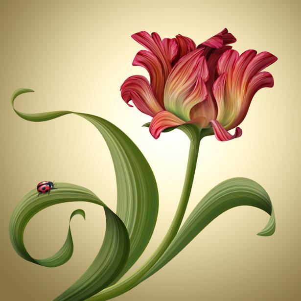 Комнатные обои рисованный тюльпан (flowers-0000620)