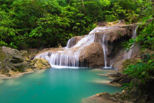 Фотообои водопад в тропиках (nature-0000717)