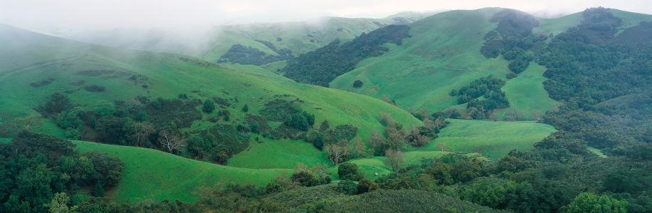 Фотообои горная холмистая свежая зелень (nature-00345)