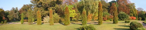 Фотообои парковый ландшафт (panorama_0000029)