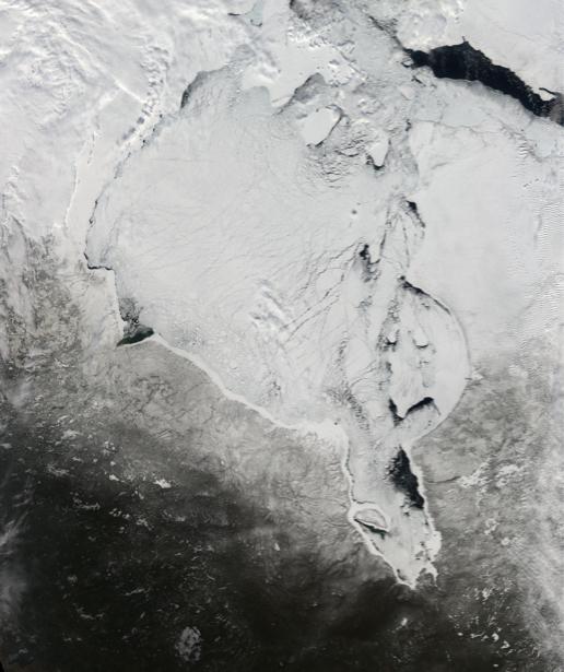 Фотообои белая фактура (terra-00009)