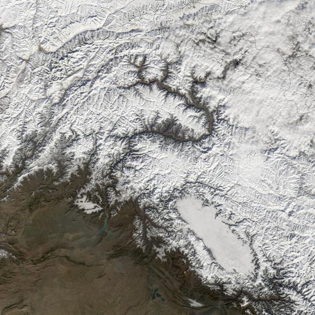 Фотообои для стен белые узоры (terra-00238)