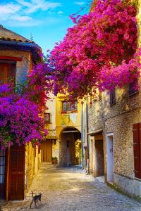 Фотообои итальянские улочки в цветах (city-0001212)