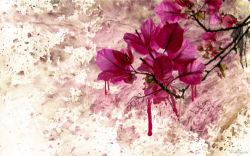 flowers-0000193