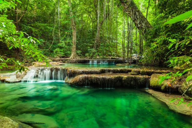 Фотообои река водопад лес (nature-0000719)