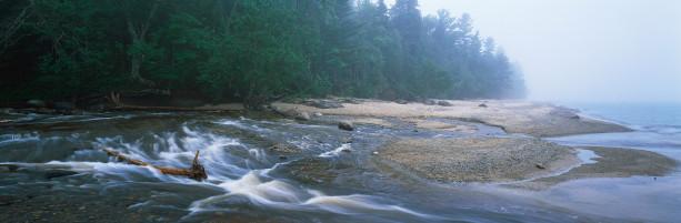 Фотообои горная река ель влага (nature-00342)