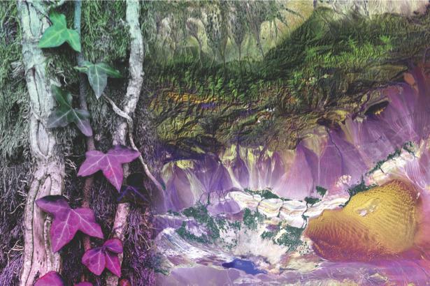 Природа растения фотообои на стену (printmaking-0000040)