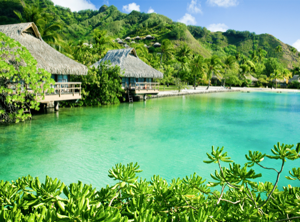 Фотообои море зеленые острова (sea-0000330)