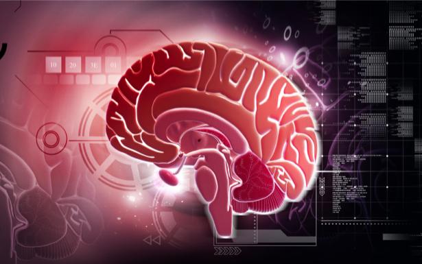 Фотообои нервные клетки мозг (background-0000270)