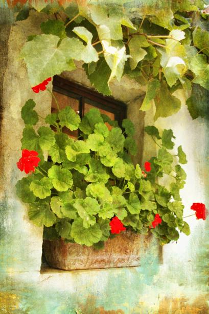 Фотообои окно, итальянские улицы, дворик (city-0000363)