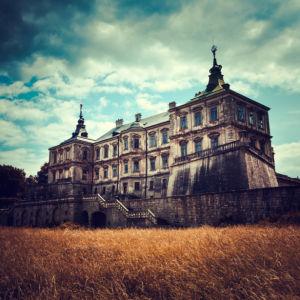 Подгорецкий замок в поле фотообои (city-0001412)
