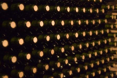 Фотообои для кухни погреб бутылки (food-0000183)