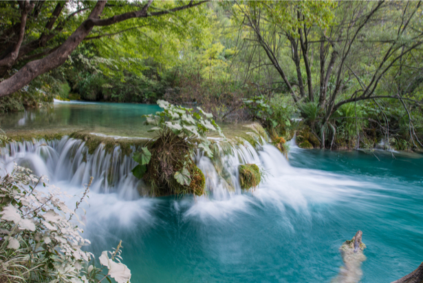 Фотообои пейзаж водопад лес (nature-0000724)