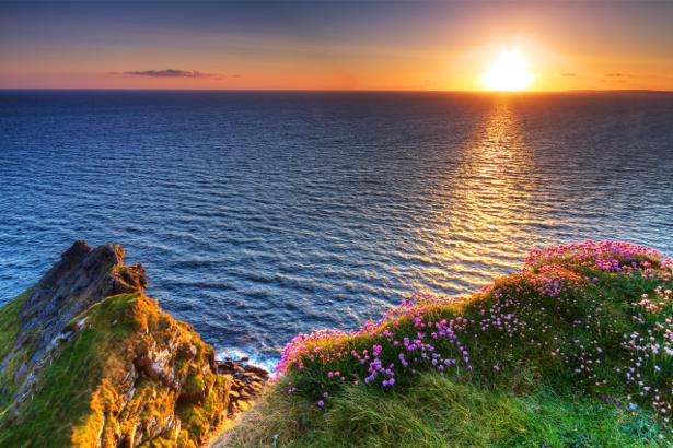 Фотообои море закат цветы (nature-00587)