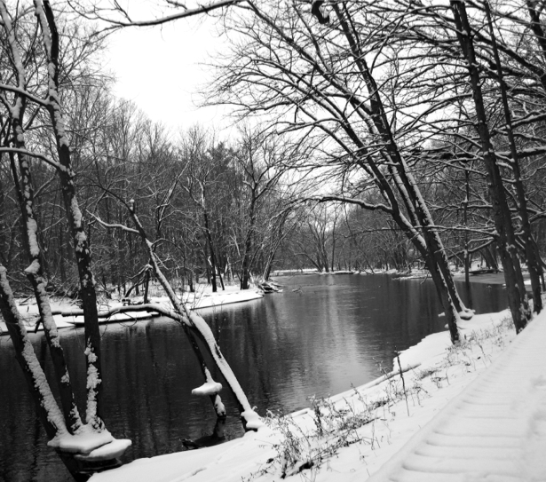 Фотообои река зимой (nature-00602)