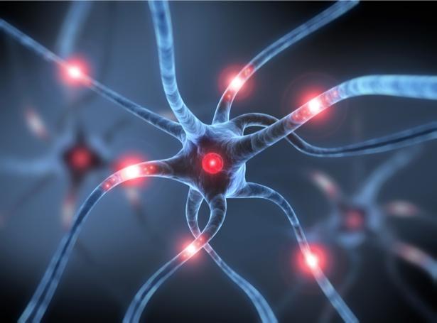 Фотообои нейроны нервные клетки (background-0000264)