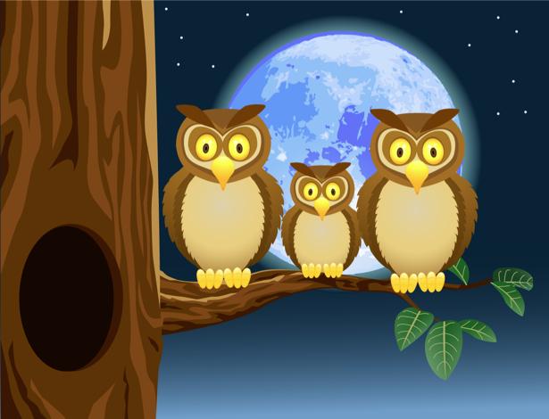 Детские фотообои три совы в лунную (children-0000227)