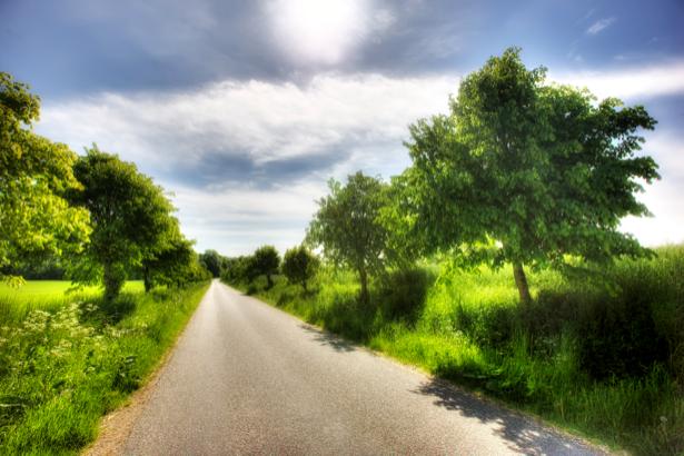 Фотообои с природой дорога лето (nature-00042)
