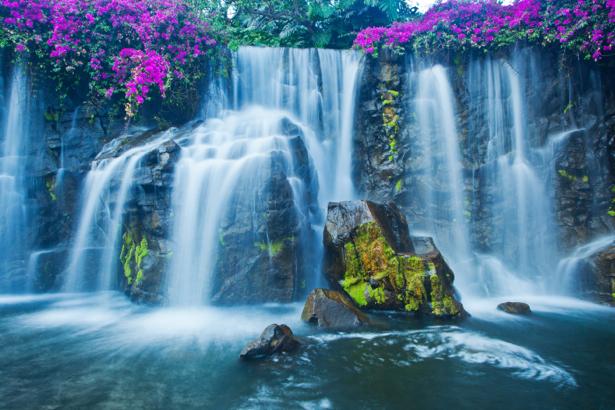 Фотообои красивый в цветах водопад (nature-00461)