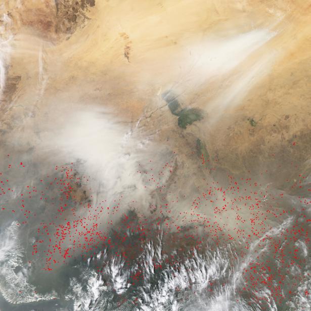 Фотообои на стену живопись природы (terra-00215)