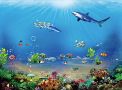 underwater-world-00162