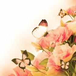 flowers-0000580