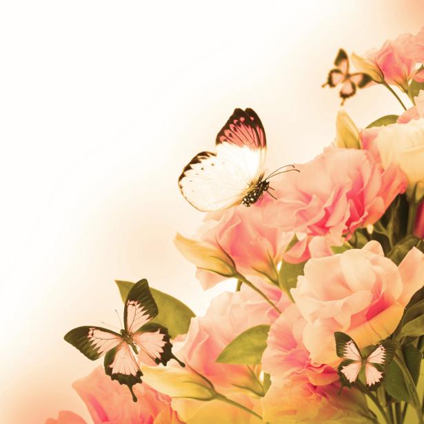 Обои на стену цветы и бабочки (flowers-0000580)