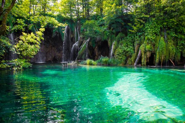 Фотообои озеро в лесу (nature-0000791)