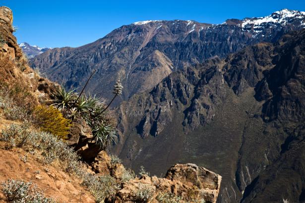 Фотообои горный пейзаж скалы (nature-0000793)
