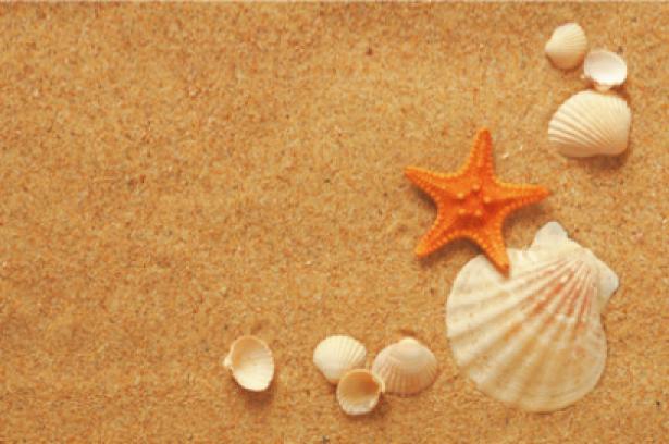 Фотообои ракушки на песке звезда (sea-0000104)