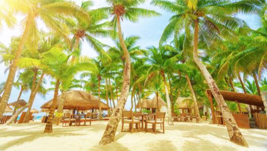 Фотообои море остров пальмы и песок (sea-0000281)