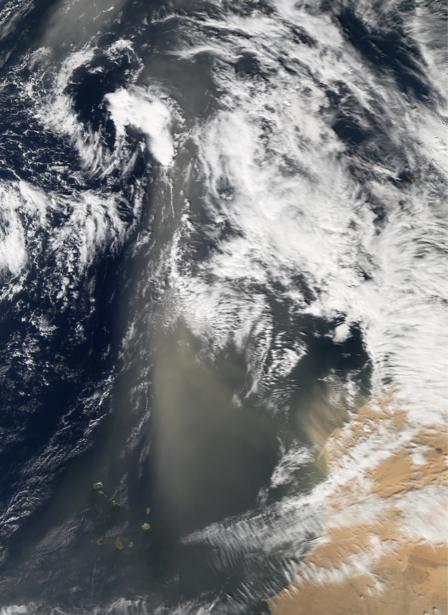 Фотообои фото облака вид сверху (terra-00099)