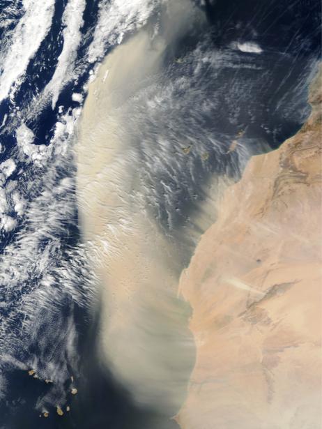 Фотообои фото перьевые облака (terra-00106)